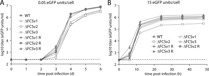 Growth properties of gB FCS − viruses. (A) Low-MOI growth curve. BHK-21 cells were infected with eGFP + WT virus and ΔFCSv1, ΔFCSv2, and ΔFCSv3 mutant and revertant viruses at an MOI of 0.05 eGFP units/cell. At the indicated times p.i., the cells were lysed by 1 cycle of freeze-thawing and titrated on BHK-21 cells by counting eGFP + cells by flow cytometry. Each point shows the mean ± standard error of the mean from 3 wells. The dashed line shows the sensitivity threshold of virus titration. The titers of the gB FCS − viruses (ΔFCSv1, ΔFCSv2, and ΔFCSv3) were significantly lower than those of the gB FCS + viruses (WT, ΔFCSv1 R, ΔFCSv2 R, and ΔFCSv3 R) on days 3 ( P