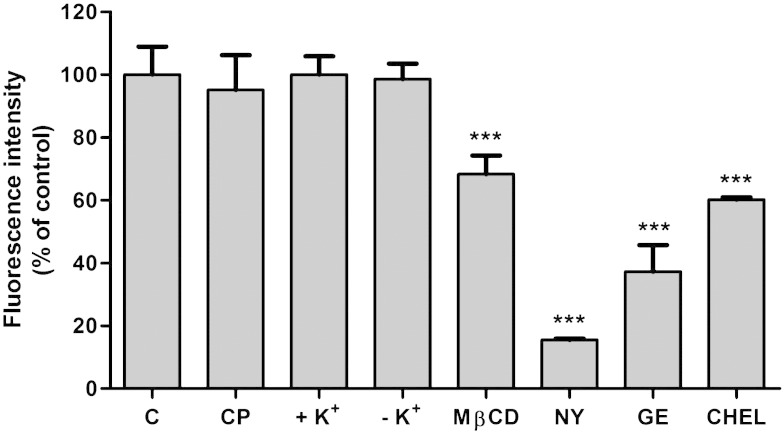 Quantitation of BODIPY-SM endocytosis in the presence of pharmacological antagonists. CATH.a cells were incubated with BODIPY-SM (1 μM) and the corresponding inhibitors as described in Fig. 3 . Cells were scraped in ice-cold HBSS and lipids were extracted with CHCl 3 /MeOH. Dried lipids were re-dissolved in ethanol and analyzed by HPLC. Results are expressed as fluorescence intensity as % of control and represent mean ± SD (n = 3) of one representative experiment. ***p