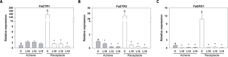 Relative expression of ethylene receptor genes ( FaETR1 , FaETR2 , and FaERS1 ), as determined by qRT–PCR, in the achenes and receptacles of ripe strawberry fruits. Asterisks indicate significant differences between the transgenic lines and the control for each sample using ANOVA and the Tukey HSD test adjusted to a 95% significance level. Different letters indicate significant differences within the control lines (achene and receptacle) for each gene using ANOVA and the Tukey HSD test adjusted to a 95% significance level.