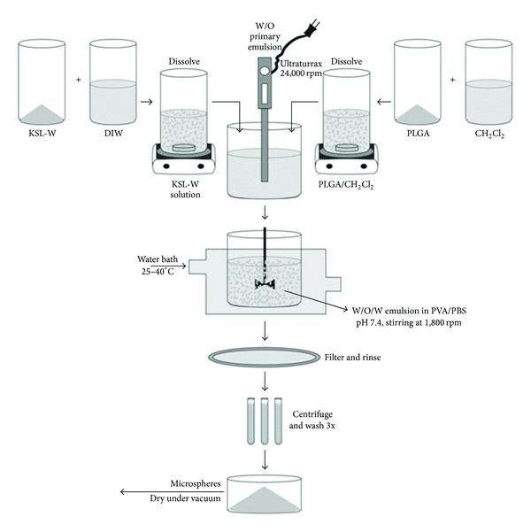 Schematic of the double-emulsification solvent extraction/evaporation method for the preparation of KSL-W-PLGA microspheres. Polycarbonate (PC) membrane filter (1 μ m size cutoff) was used to filter the MS.