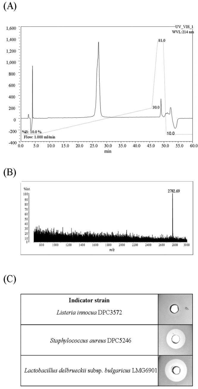 HPLC profile (A), MALDI-TOF MS data (B), and antimicrobial activity (C) of purified bactofencin A. WVL, wavelength.