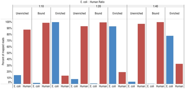 """MBD-Fc enriches E. coli DNA from mixed E. coli and human DNA (IMR-90) samples. Graphs showing the percentage of mapped reads from Ion Torrent PGM experiments to either the E. coli MG1655 or human hg19 reference genome from libraries made with different ratios of human to E. coli DNA. The ratio between E. coli to human DNA in the premixed samples is indicated above the figure. """"Unenriched"""" refers to untreated, control mixtures. """"Bound"""" indicates DNA that remained bound to MBD-Fc beads and """"Enriched"""" corresponds to unbound DNA remaining in the supernatant."""