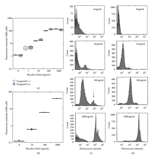(a) Dose response relationship between Hoechst 33342 and fluorescence intensity in the presence or absence of 50 μ M verapamil in IEC-6 cells, (b) Hoechst 33342 dose response for fluorescence intensity in IU-937 cells, and (c) FACS analysis of IEC-6 cells incubated with 0, 10, 100, or 1000 ng/mL Hoechst 33342. Note that the small peak (indicated by an arrow) is also observed at 100 ng/mL of dye. (d) FACS analysis of U-937 cells incubated with 0, 10, 100, or 1000 ng/mL Hoechst 33342.