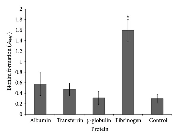 Effect of various plasma proteins added to THB-HK medium on biofilm formation by S. mutans . Results are expressed as means ± standard deviations of triplicate assays from two independent experiments. * P