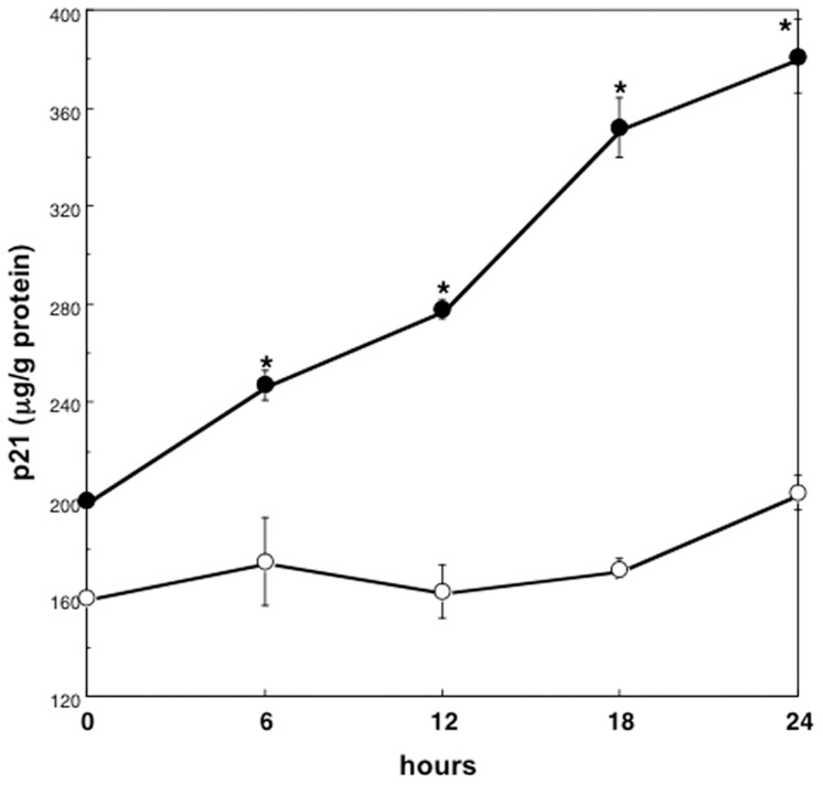Serial changes in p21 protein levels of hepatocytes treated with HGF. Rat hepatocytes were cultured at high density in WE containing 10% FCS and 10 ng/mL HGF, and were harvested serially. Closed circles denote hepatocytes cultured at high density. Open circles denote hepatocytes cultured at low density. Data are mean ± SEM of four dishes. *p