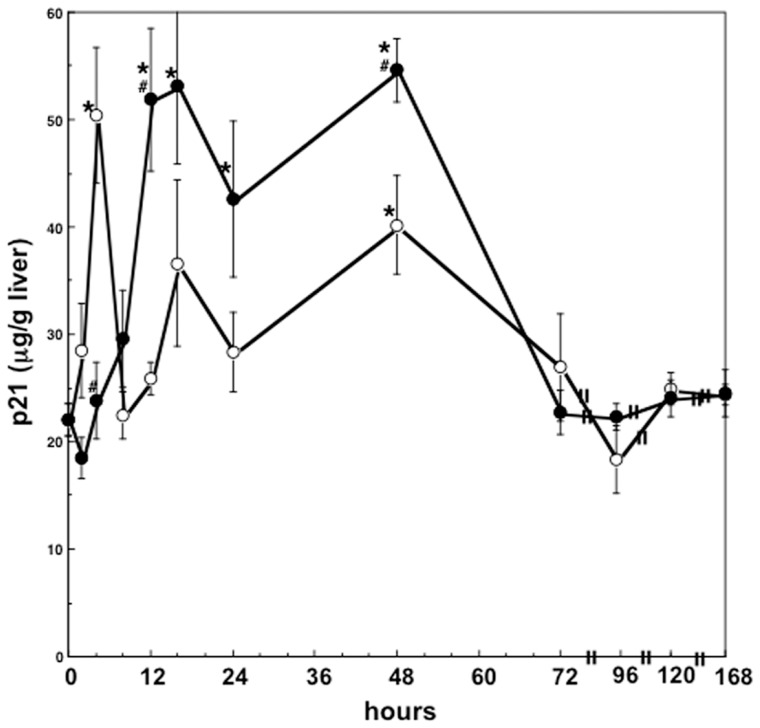 Changes in hepatic p21 levels after two thirds partial hepatectomy in rats. Data are mean ± SEM of four rats. Open and closed circles indicate the hepatic p21 levels in partially hepatectomized rats and in sham-operated rats, respectively. *p