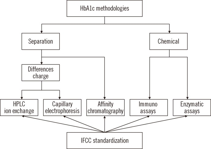 Analytical concepts of HbA1c measurement methods and their traceability to the IFCC-RMP. Abbreviations: IFCC, International Federation of Clinical Chemistry; RMP, Reference Measurement Procedure.