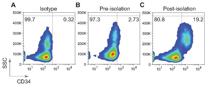 L-selectin mediated isolation of CD34+ cells from patient bone marrow samples under acidic pH. Captured cells were labeled using a mouse anti-human CD34 monoclonal antibody. Flow cytometry plots are a representation of experiments done in triplicate. SSC = side scatter.