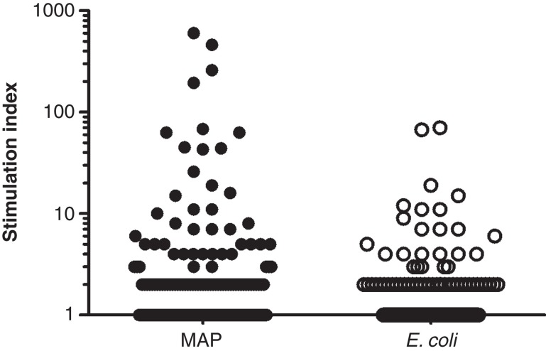Screening of 3972 clones from one CD patient (IBD55). CD4 T cells were isolated from intestinal biopsies and expanded in vitro . The responses to MAP and E. coli was tested in a 3 H thymidine incorporation assay using autologous adherent cells as APC. Each symbol represents one tested well. The line indicates the cut-off of a stimulation index > 10 (response in antigen stimulated well/response in unstimulated wells). The response to the two bacterial antigens was compared using a binominal test ( p = 0.032).
