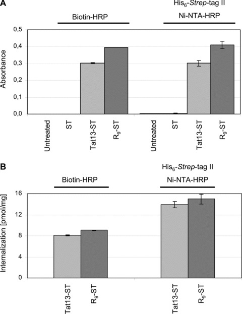 Internalization of functional <t>HRP</t> by Tat13-ST and R 9 -ST. (A) Analysis of enzymatic HRP activities upon internalization of His 6 - Strep -tag II complexed with <t>Ni-NTA-HRP</t> or biotin-HRP, by the indicated Transtactins. Cells treated with either ST alone, or Ni-NTA-HRP complexed with His 6 - Strep -tag II, or biotin-HRP, showed no HRP activities (data not shown). (B) Absorbance was recalculated to the amount of both internalized HRP and total protein. Uptake results are expressed as pmol of HPR per mg of total protein.