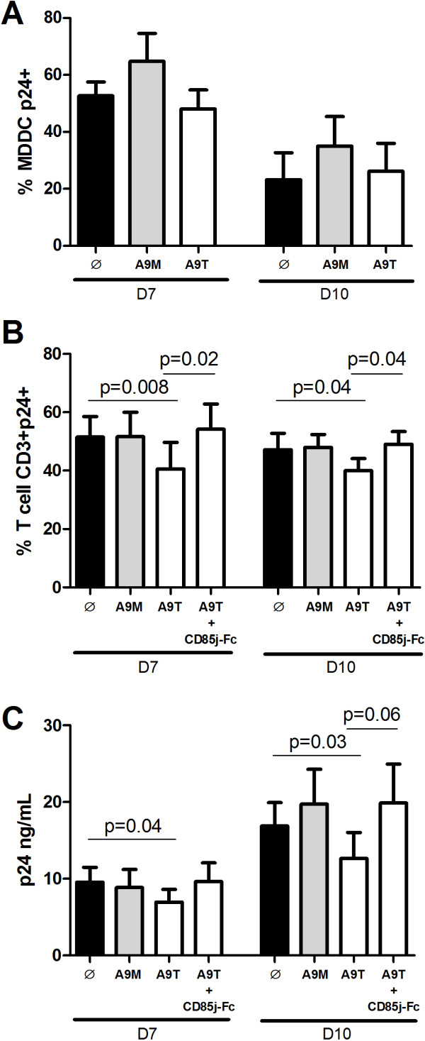 Anti-HIV-1 activity of NK cell stimulated by S100A9 monomer or tetramer proteins. MDDC or CD4+ T cells were infected by HIV-1 and then cultured with unstimulated, S100A9 monomer- or S100A9 tetramer-stimulated NK cells (black, grey and white bars respectively) at the ratio E/T of 1:5. (A-B) HIV-1 replication was measured by intracellular p24 expression in MDDC and CD4+ T cells after 7 and 10 days of culture. (A) Graph represents cumulative results from 4 independent experiments showing the percentage of p24+ MDDC. (B) Graph represents cumulative results from 8 independent experiments showing the percentage of p24+ CD4+ T cells. (C) Graph represents cumulative results from 6 independent experiments showing the amount of p24 HIV-1 antigen in the supernatant of HIV-1-infected CD4+ T cells in culture with unstimulated, S100A9 monomer- or S100A9 tetramer-stimulated NK cells (black, grey and white bars respectively). For blocking experiments, NK cells were stimulated with an equimolar combination of CD85j-Fc + S100A9 tetramer. Results are expressed as mean ± SE and p values are shown.