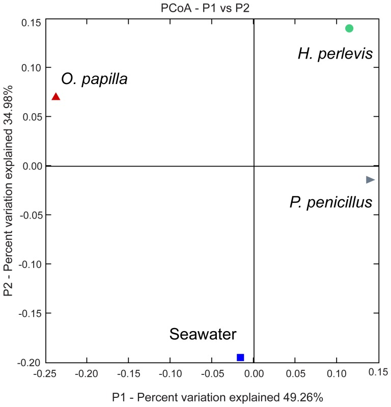 Principal Coordinate Analysis (PCoA) plot based on weighted unifrac distances. 16s rRNA sequences are binned according to sample source using a category mapping file. The percentage variation explained with first two principal components (P1 and P2).
