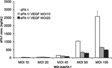ELISA quantification of in vitro complex formation between sFlt-1-Fc and VEGF in cell supernatants. Five hundred fifty-nine cells were infected with increasing amounts of Ad-sFlt-1in the absence (white bars) or in the presence of Ad-VEGF with a MOI of 10 (grey bars) or with MOI of 20 (black bars). The amounts of sFlt-1 in the supernatant 72 hrs after infection were diluted and measured by an ELISA for mouse Flt-1. Indicated are the mean values from duplicates (mean ± SEM).