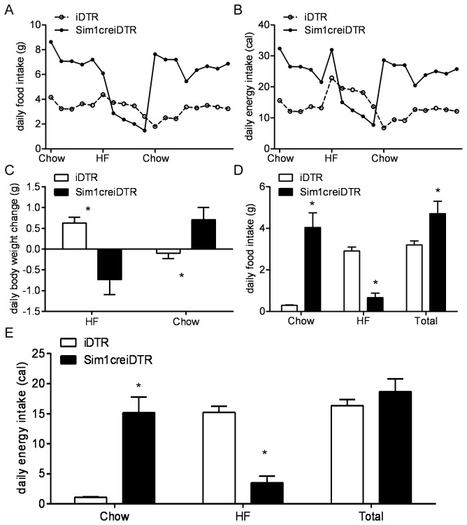 Real-time quantitative PCR comparing Sim1 mRNA, MC4R mRNA, and Galanin mRNA in PVN and Amygdala of Sim1creiDTR and iDTR mice, and comparing OXTmRNA in PVN of Sim1creiDTR and iDTR mice. Relative mRNA abundance of SIM1 (A), MC4R (B), OXT (C), and GAL (F) expression in the PVN and SIM1 (D), MC4R (E), and GAL (G) amygdala. (n=4 to 9 for each group, * p