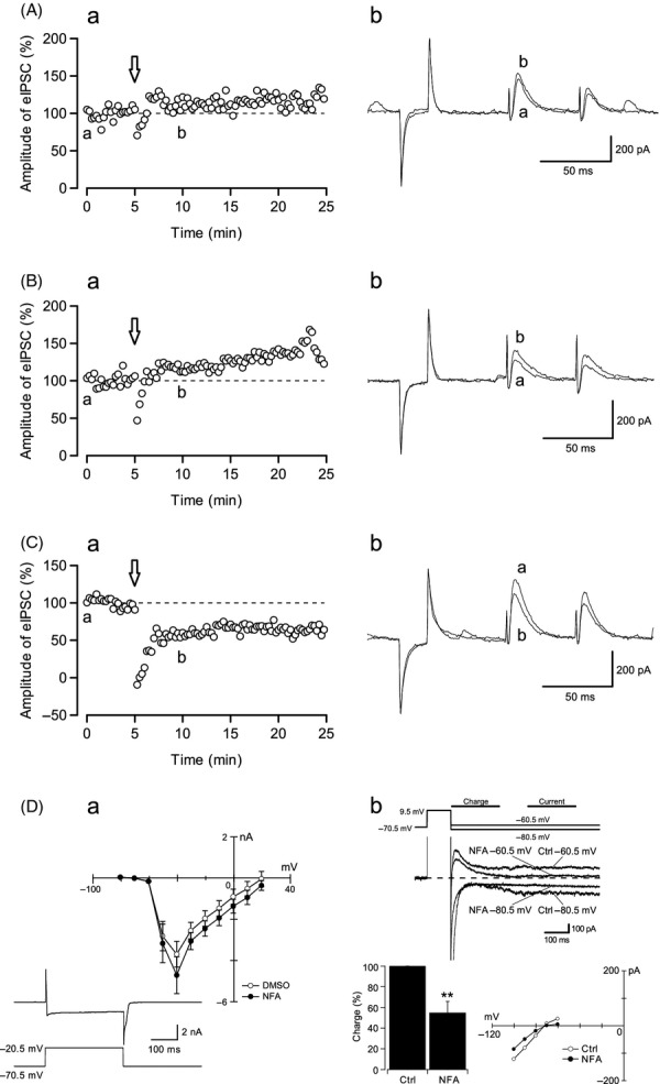 CaCC blockers disturbed DDI occurrence. (A) The experiments were performed using a pipette filled with NFA (10 μmol/L, n = 7), (B) DIDS (10 μmol/L, n = 8), and (C) vehicle (DMSO; 0.01%, n = 6). The left panel (a) represents the time course of the experiments. The right panel (b) shows representative traces from each experiment. The traces of a (before, at t = 0) and b (after, at t = 10) correspond to the timings shown on the left in the figures. Depolarizing trains were applied at t = 5, arrow. (D) a. Current-voltage relationships of calcium currents in the presence of NFA (filled circles, n = 8) and DMSO (open circles, n = 8). Data obtained from vehicle experiments with DMSO were used as a control. Inset; representative trace of voltage-dependent calcium current was recorded at a holding voltage of −70.5 mV to 20.5 mV with NFA in the pipette. b. Representative traces of chloride tail currents, elicited by holding voltages of −80.5 mV and −60.5 mV. NFA blocked the tail current of CaCCs ( n = 8). Bar graph shows the effect of NFA on the charge of the tail current ( P