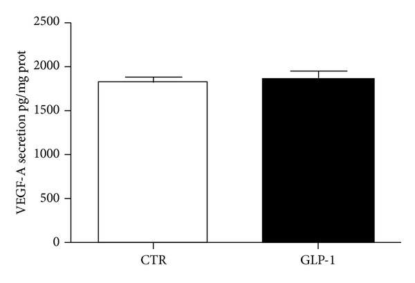 GLP-1 does not affect secretion of VEGF-A. ARPE-19 cells were cultured for 24 h in in the presence or absence of 10 nmol/L GLP-1. The conditioned media were collected, and VEGF-A levels in supernatants were assessed by ELISA. VEGF-A concentration was calculated from standards curve and normalized to total protein concentration of the respective lysates. The results are representative of three independent experiments (mean ± SE).