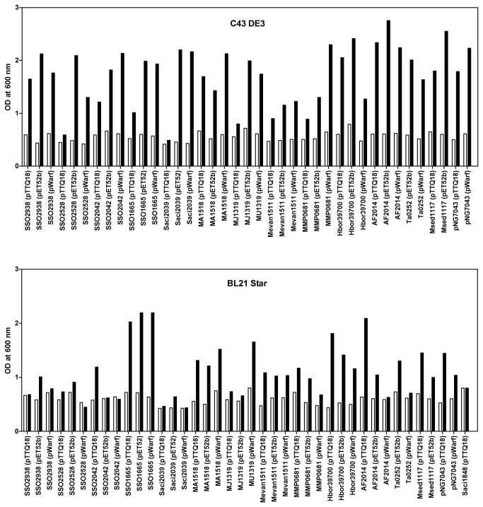 Cell density at induction and harvesting. Expression tests of archaeal transporters were performed in E. coli C43(DE3) and BL21 Star strains. Cells were grown in LB medium, induced with 0.5 mM IPTG at OD 600nm of 0.4-0.8 and harvested 3 hours post-induction. The bars show the OD 600nm at the time of induction (white) and harvesting (black).