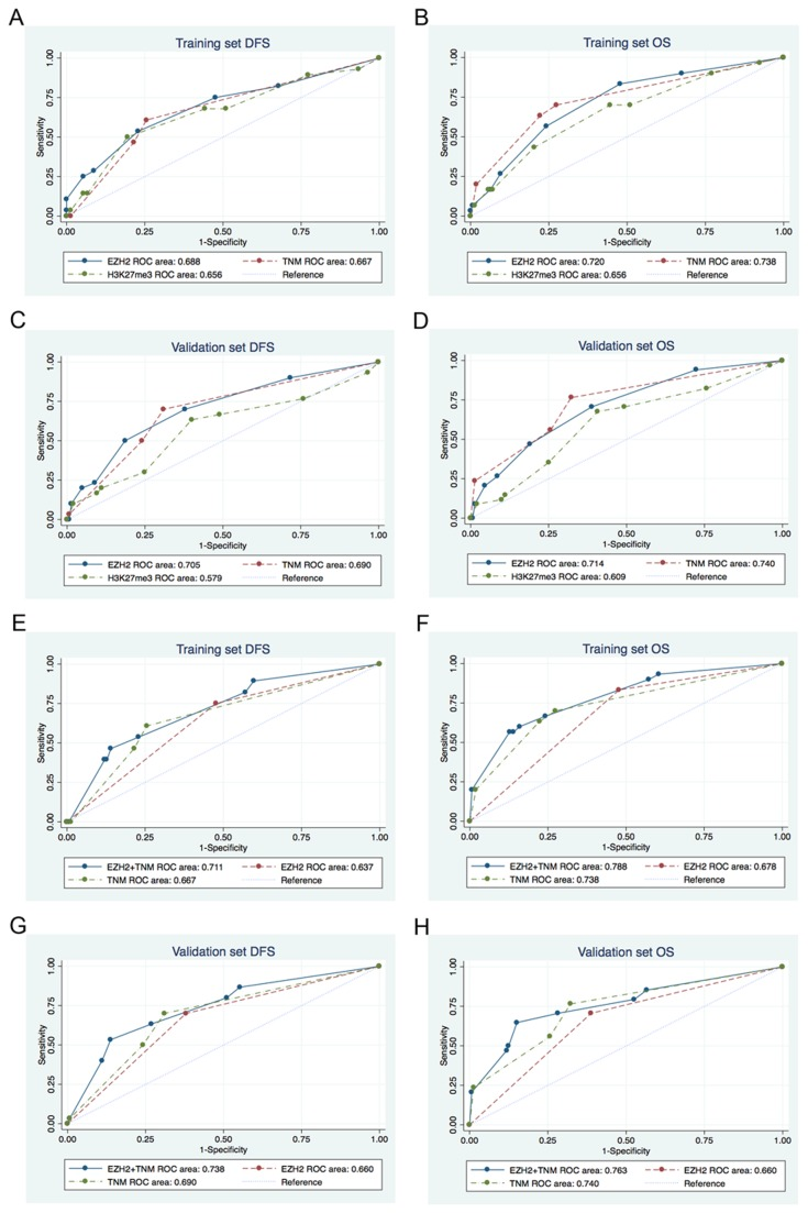 Comparisons of the receiver operating characteristic (ROC) curves for prediction of survival by the EZH2 score, TNM stage, and H3K27me3 score. (A) (E) DFS, (B) (F) OS in the training set. (C) (G) DFS, (D) (H) OS in the validation set. (A-D) the area under the ROC curves (AUROC) of EZH2 score versus the AUROC of TNM stage, or H3K27me3 score. (E-H) the AUROC of the combined EZH2 and TNM stage model versus the AUROC of the TNM stage or EZH2 expression alone model.