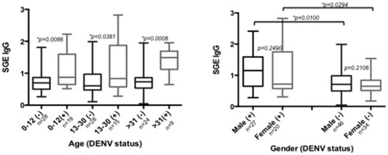 Concentration of anti- Ae. aegypti SGE antibodies according to gender and age categories in participants infected with DENV-RNA (+) versus participants without DENV-RNA (−) infection. Statistical significance of Mann-Whitney test (*) p
