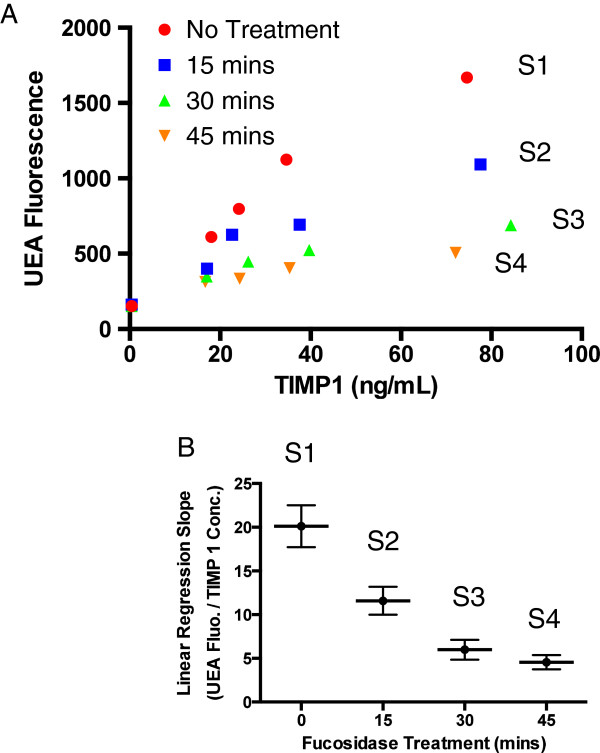 Slopes of the dose response curves established using the dLISA approach correlated with TIMP-1 fucosylation. (A) Dose–response curves of serum samples spiked with differentially fucosylated recombinant TIMP-1. Recombinant TIMP-1 was treated by α1, 2 fucosidase at different length of time (0, 15, 30, and 45 minutes) before they were spiked into with four serum aliquots. These aliquots came from the same pool of sera with endogenous TIMP-1 immuno-depleted (confirmed by the TIMP-1 immunoassay). After the recombinant protein spiked in, these serum samples underwent the dLISA approach. (B) A graph presentation of linear regression slopes of the dose–response curves versus the length of fucosidase treatment (minutes).