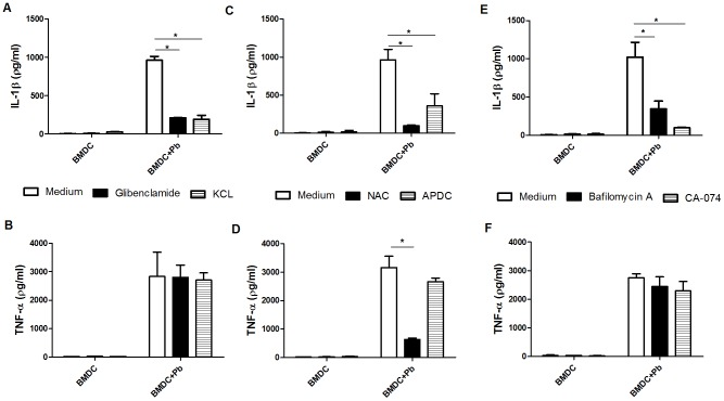 NLRP3 inflammasome activation by P. brasiliensis requires K + efflux, ROS production, lysosomal acidification and cathepsin B release. BMDCs were pretreated for 1( Methods section) of (A, B) <t>glibenclamide</t> and <t>KCL,</t> (C, D) NAC and APDC, or (E, F) bafilomycin and CA-074. Then, the cells were infected with P. brasiliensis (Pb) at an MOI of 1 for 24 h. The supernatants from the cultures were harvested for IL-1β and TNF-α assays using ELISA. The data are expressed as the mean ± the SD of two to three independent experiments conducted in triplicates. * p ≤0.05.