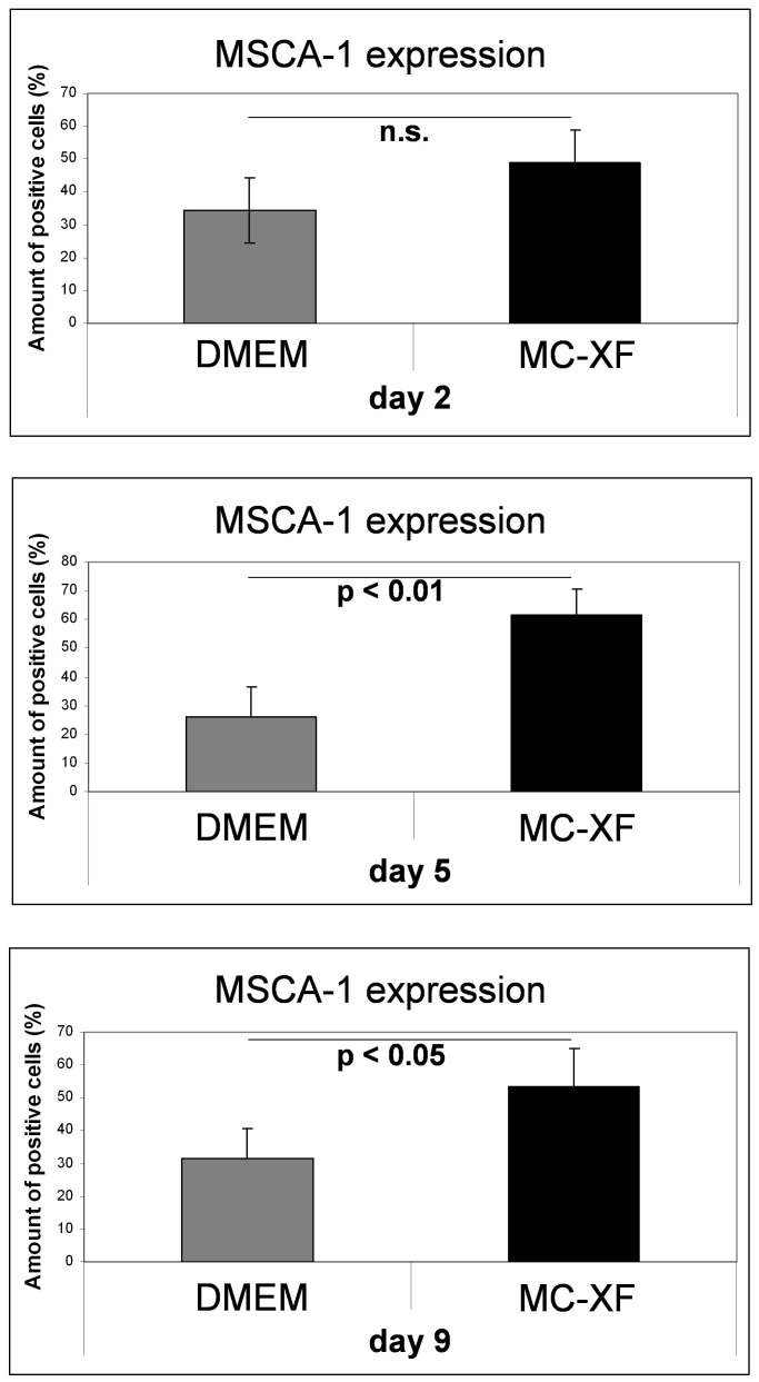 Quantification of MSCA-1 + cells under <t>DMEM-</t> and MC-XF culturing conditions by FACS analysis. Unseparated <t>JPCs</t> were plated in culture dishes in DMEM medium. For the first test runs, cells were maintained in DMEM medium whereas the second series underwent stepwise FCS reduction and convertion to MC-XF medium. At the same time points (day 2, 5 and 9 after conversion from DMEM to MC-XF culture conditions), cells were detached from the dishes and the percentages of MSCA-1 + cells were determined by FACS analysis. Significant higher amounts of MSCA-1 + cells were detected under MC-XF culturing conditions at day 2 and 5 (p