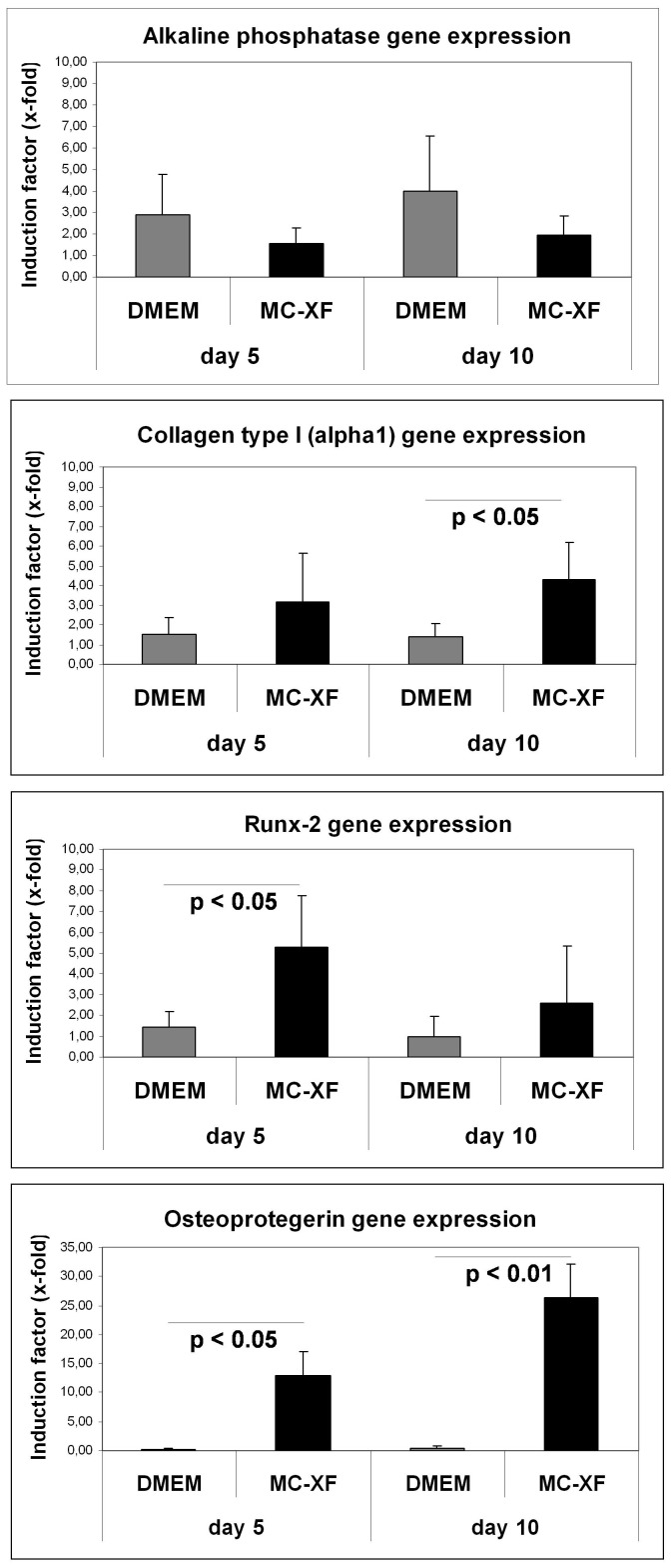 Quantitative analysis of gene expression levels in DMEM- and MC-XF-cultured JPCs at day 5 and 10 of osteogenesis (of passage 6, n = 4). Induction indices (x-fold) and significance values of alkaline phosphatase, Runx-2, type I collagen (alpha1-chain) and osteoprotegerin in osteogenic induced in comparison to untreated cells under both culture conditions are illustrated.