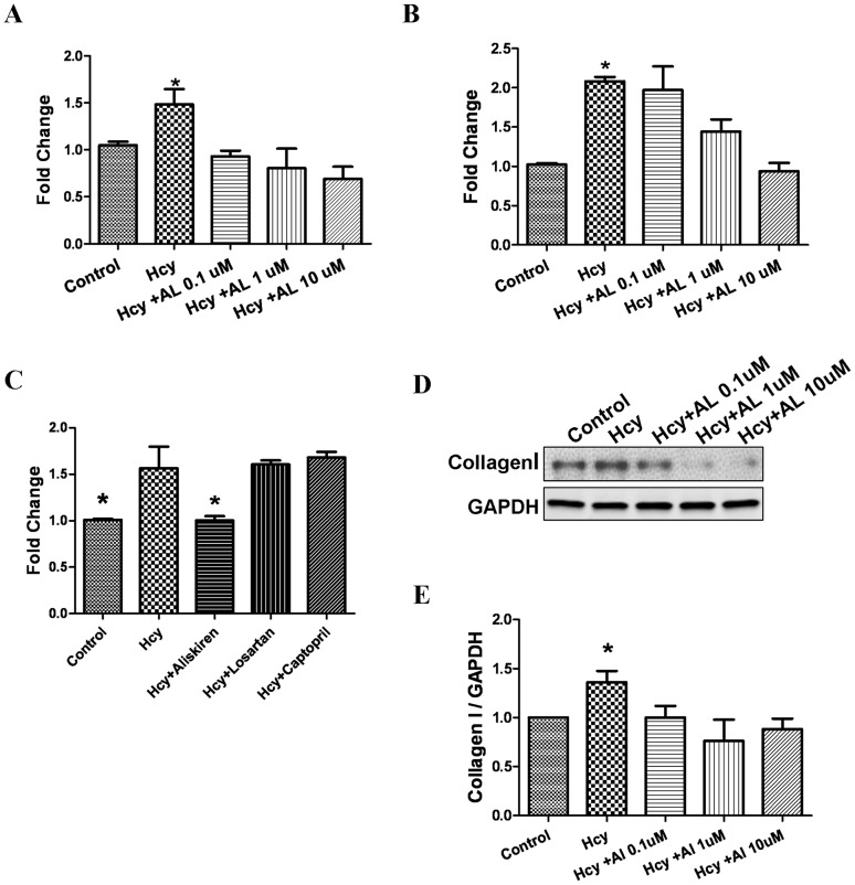 Effects of aliskiren on homocysteine-induced matrix expression in cultured cardiac fibroblasts. Fibroblasts were cultured in the presence or absence of D,L, homocysteine 200 µmol/L for 24 hours after pretreatment with varying concentrations of aliskiren (0.1–10 µmol/L). Real time PCR was done to measure relative expression of COLIA2 (alpha 2 chain of type I collagen; A) and COL3A1 (alpha 1 chain of type III collagen; B) genes. Figure 5C demonstrates the results of real time PCR to compare the effects of losartan and captopril with aliskiren on homocysteine induced expression of COL1A2 gene. Western blotting was conducted to measure the expression of collagen type I protein (D and E) Glyceraldehyde 3 phosphate dehydrogenase (GAPDH) was used as internal control. Hcy-D,L, homocysteine; AL-aliskiren; Los – losartan; and Cap – captopril. *p