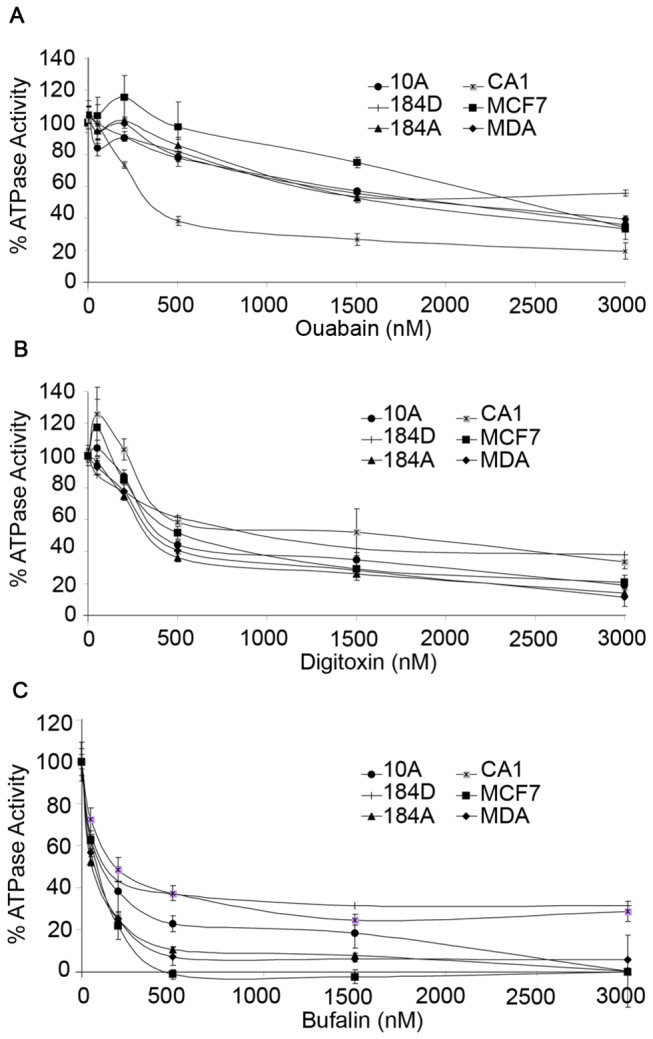 ATPase Assay of breast cell membranes treated with cardiac glycosides; (A) ouabain, (B) digitoxin, and (C) bufalin. The Na,K-ATPase activity in total membranes isolated from non-tumorous 184D, 184A, and MCF10A (10A) cells, as well as cancerous MDA-MB-231 (MDA), MCF7, and MCF10CA1 (CA1) cells is inhibited in a concentration dependent manner for all cells types. Na,K-ATPase activity (µmol Pi liberated per mg protein per hour) was determined and displayed as the percentage of activity relative to the untreated sample for each cell type. There was no statistically significant difference in activity between normal and tumor cells treated with similar concentrations of ouabain, digitoxin, or bufalin (p > 0.05).