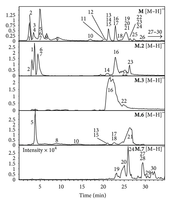 LC-ESI-MS (negative mode) of the methanol-water partition M and the recovered HSCCC fractions ( M.2 , M.3 , M.6, and M.7 ). Intensity × 10 5 when not another is written.