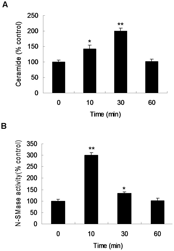 Effect of Ox-LDL on ceramide level and neutral sphingomyelinase (N-SMase) activity in VSMCs. Cells were incubated with 50 µg/ml Ox-LDL and harvested at indicated time points (n = 3). ( A ) Ceramide levels were determined using diacylglycerol kinase assay. ( B ) The activity of N-SMase was measured using 14 C sphingomyelin as substrate. *p