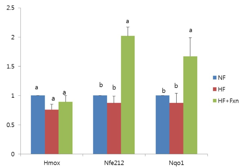 Effect of fucoxanthin rich powder on mRNA expression of transcription factor and enzymes related to antioxidant system in the liver of rats. Total RNA was isolated using TRI-reagenet, and cDNA was synthesized using 3 ug of total RNA with SuperScript II reverse transcriptase. Realtime PCR was performed using SYBR green and standard procedures to assess the mRNA expression of the primer in liver samples obtained from each group. An Applied Biosystem StepOne softwere v2.1 was used. Each bar represents the mean ± S.E of three independent experiments. Different letters above each bar indicate significant differences among the groups at α = 0.05 as determined by Duncan's multiple range tests. HO-1: heme oxygenase (decycling) 1, Nrf2: nuclear factor, erythroid derived 2, like 2, NQO-1: NAD(P)H quinone oxidoreductase 1.