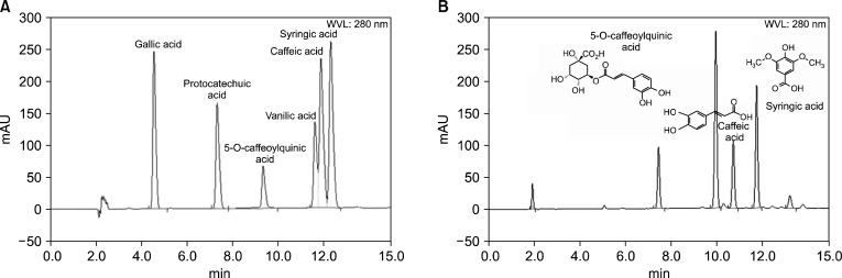 HPLC chromatograms of various extracts obtained from medium roasted coffee beans. (A) Phenolics as compound standards, (B) Extracts obtained from medium roasted coffee beans. Retention times: gallic acid, 4.56 min; protocatechuic acid, 7.34 min; 5-O-caffeoylquinic acid, 9.37 min; vanillic acid, 11.65 min; caffeic acid, 11.92 min; syringic acid, 12.35 min.