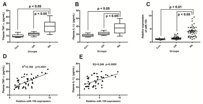 miR-155 upregulation correlates with increased production of TNF-α and IL-1β in Rheumatoid arthritis (RA) patients. ( A ) and ( B ): Increased expression of TNF-α and IL-1β in RA plasma. Results are expressed as pg/mL by an ELISA test; ( C ): MiR-155 is upregulated in PBMCs of active RA patients. Results in patients with RA ( n = 45) and OA ( n = 32) are shown as fold increase relative to the control group ( n = 25); ( D ) and ( E ): Correlations between Relative miR-155 expression with the TNF-α or IL-1β expression. RA, rheumatoid arthritis; OA, osteoarthritis. Statistical significance was considered with a p value