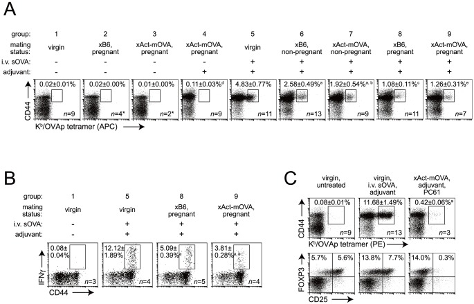 Non-immunogenic responses of maternal CD8 T cells to shed placental mOVA. (A) Effects of mating, pregnancy, adjuvant (anti-CD40 Abs +poly(I:C)), sOVA, and mOVA on the expansion of OVA-specific CD8 T cells. Adjuvant±sOVA was injected 6 days prior to sacrifice. Representative dot plots and mean±SEM of the percentage of CD44 hi APC-conjugated K b /OVAp-tetramer + cells of total splenic CD8 T cells. Pregnant mice were killed on E17.5 to 1 day after delivery. Mated mice that failed to become pregnant were killed on what would have been E17.5-21.5. Aside from group 3 (one experiment), data are from at least 4 independent experiments per group. In addition (*), n = 7 group 2 and n = 4 group 3 mice showed no difference compared to n = 9 virgin, untreated (group 1) mice when analyzed with PE-conjugated K b /OVAp-tetramers (2-8 experiments). a, P