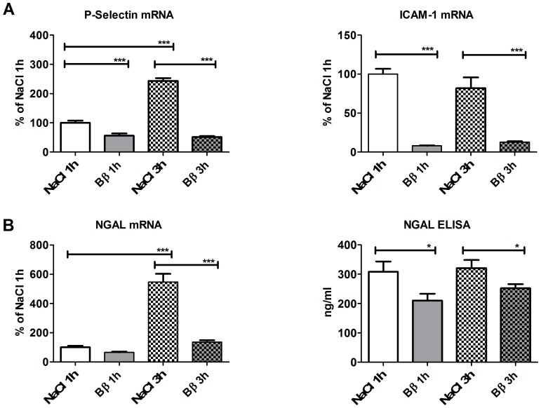 AKI-marker <t>NGAL</t> serum levels and tissue gene expression of P-Selectin and ICAM-1 as well as NGAL were significantly reduced after IR in mice treated with Bβ 15–42 compared to untreated mice. ( A ) Tissue gene expression of adhesion molecules P-Selectin (left graph) and ICAM-1 (right graph). ( B ) Tissue gene expression of the AKI marker NGAL (left graph). Circulating protein levels of serum NGAL (right graph). Values are expressed in % of NaCl for mRNA analyses and in ng/ml for <t>ELISA</t> measurements. All experiments were performed in duplicates. Error bars represent means ± SEM. *P