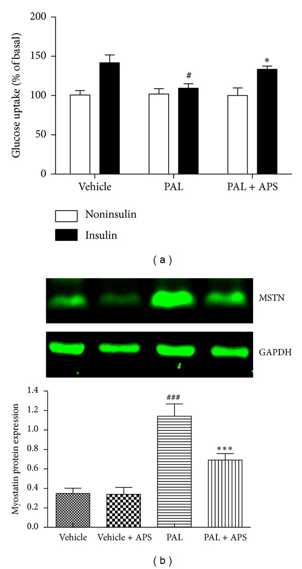 Effect of APS on glucose uptake and myostatin expression in C2C12 cells exposure to palmitate. C2C12 cells were incubated for 24 h in DMEM containing 5% BSA in either the presence (FFA-treated cells) or absence (control cells) of 0.5 mmol/L FFAs. Cells treated with APS were incubated with additional APS at the final concentration of 200 μ g/mL. (a) Glucose uptake was assayed using [3H]2-deoxyglucose in the presence or in the absence of 100 nM insulin. # P