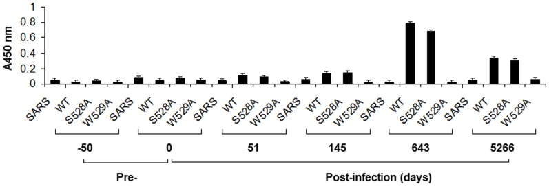 """Time course of epitope-specific antibody production in Patient H. Biotin-linked peptides containing the 1H8 binding site and the specific mutation of the binding site were incubated with <t>streptavidin-coated</t> 96-well plates at 200 ng/well. The plasma samples obtained from Patient H were diluted 1∶800 for the ELISA. An unrelated peptide was used as a negative control for the assay. The data were obtained from at least three independent experiments. The x-axis indicates the peptide used in the ELISA and the time when the sample was collected. The y-axis indicates the absorbance at 450 nm, representing the binding activity of the """"1H8-like"""" antibodies in the samples from Patient H."""