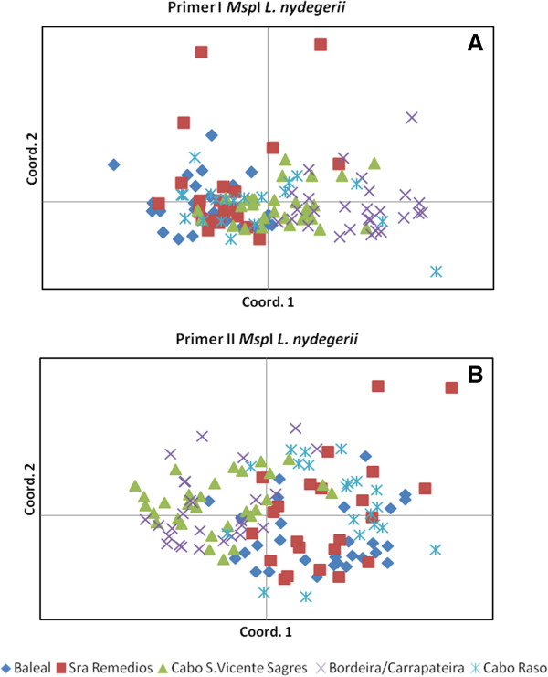 Principal Coordinate Analysis (PCoA) representing genetic variability in Limonium nydeggeri populations. PCoA was based on presence/absence scores of 488 (primer I, E1/H1) (A) and 347 (primer II, E1/H3) (B) polymorphic loci obtained from MSAP profiles using isoschizomers Msp I (methylation insensitive) or Hpa II (methylation sensitive) as frequent cutters. The first two coordinates were extracted and plotted against each other.