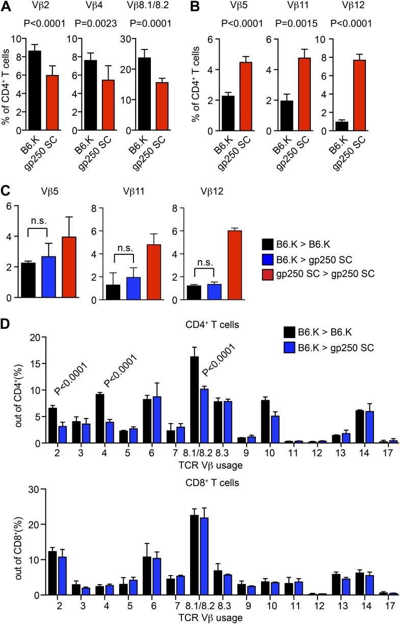 TCR Vβ usages of peripheral T cells in gp250 SC mice. ( A and B ) Vβs expression of peripheral CD4 + T cells in B6.K or gp250 SC mice. The frequencies of three Vβs were decreased ( A ) and three were increased ( B ). n = 9; data are representative of three experiments. n = 4; mean ± SD; two-tailed Mann–Whitney test. ( C and D ) B6.K HSC cells were used to reconstitute lethally irradiated gp250 SC or B6.K mice. After a 12-week reconstitution, Vβx expression repertoire in CD4 + or CD8 + T cells were examined ( D ), and the frequencies of Vβs that were increased in gp250 SC mice ( B ) were shown in ( C ). n = 5; the data are representative of three experiments. n = 4; mean ± SD; two-tailed Mann–Whitney test. DOI: http://dx.doi.org/10.7554/eLife.01457.005