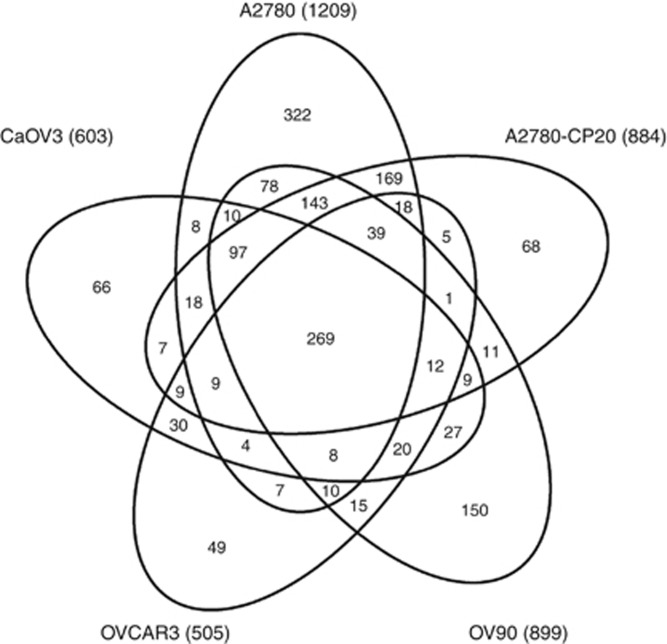 Venn diagram of 1688 secretome proteins identified with two or more spectral counts from five EOC cell lines.