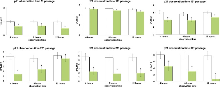 Effect of REAC TO-RGN on p21 gene expression. hADSCs at passages 5, 10, 15, 20, 25, and 30, reaching 80 % confluence, were exposed for 4, 8, or 12 h in the absence or presence of REAC. The amount of p21 mRNA from control ( white bars ) and TO-RGN-treated ( green bars ) cells was normalized to HPRT1 and was plotted as fold change relative to the mRNA expression at passage 5 (time 0), defined as 1. ( Asterisk ) significantly different from the untreated cells (mean ± S.E.; n = 6) ( P