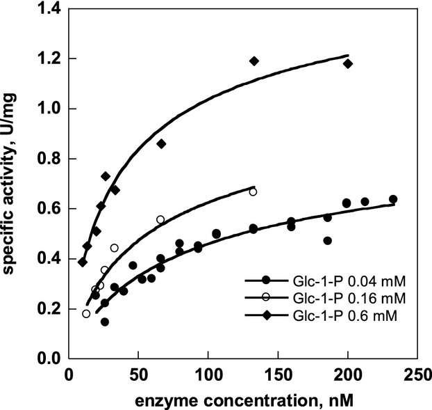 Specific activity of F119L-PMM2 depends on enzyme concentration. The assay was performed at 32°C in a reaction mixture containing HEPES 20 mmol/L, pH 7.5, MgCl 2 5 mmol/L, NaCl 150 mmol/L, NADP+ 0.25 mmol/L, Glc-1,6-P 2 0.030 mmol/L, and yeast glucose 6-phosphate dehydrogenase 10 μg/mL. The reaction mixture also contained BSA at 0.5 mg/mL. Three sets of experiments were carried out in the presence of 0.04, 0.16, or 0.6 mmol/L Glc-1-P and the F119L-PMM2 concentration changed in the range 10–240 nmol/L (monomer equivalents).