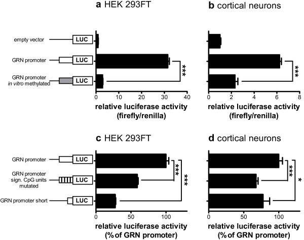 DNA methylation inhibits GRN promoter activity at distinct CpG units. In vitro methylated and unmethylated pCpGL plasmids containing the GRN core promoter region driving expression of firefly luciferase were transiently cotransfected into ( a ) HEK 293FT cells and ( b ) primary rat cortical neurons together with a Renilla luciferase expressing plasmid. The full length GRN promoter pCpGL plasmid, a GRN promoter construct with site specific mutations of the significant CpG units in amplicons A-1 and A-2, and a short GRN promoter construct lacking amplicons A-1 and A-2 were transiently cotransfected into ( c ) HEK 293FT cells and ( d ) primary rat cortical neurons together with a Renilla luciferase expressing plasmid. Luciferase reporter activity was measured 48 h (a + c, HEK 293FT) or 72 h (b + d, neurons) after transfection. Relative luciferase activity was determined by normalizing firefly luciferase against Renilla luciferase activity. The empty vector was used as negative control. Mean ± SEM, n ≥ 3. ***p