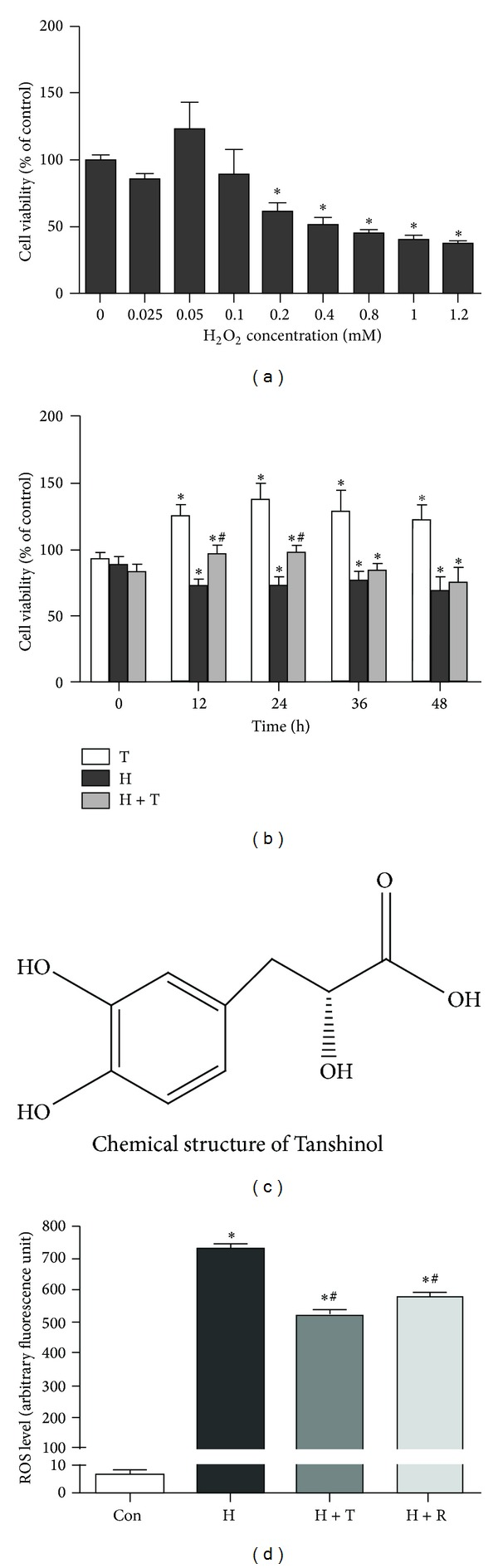 Protective effects of Tanshinol against H 2 O 2 -induced cell death and ROS generation. (a) Cell viability was measured by MTT assay in C2C12 cells exposed to H 2 O 2 at the indicated concentration for 24 h. (b) C2C12 cells were pretreated in the presence or absence of Tanshinol (1 μ M) for 1 h before the addition of H 2 O 2 (200 μ M) and were subsequently cultured for 0 h, 12 h, 24 h, 36 h, and 48 h, respectively. (c) The chemical structure of Tanshinol consists of polyphenolic hydroxyl groups. (d) C2C12 cells were pretreated as described in (b), followed by H 2 O 2 (200 μ M) for 24 h, and the oxidative status of C2C12 cells was quantified by DCHF-DA to monitor the emitted fluorescence intensity resulting from intracellular oxidation using flow cytometry. Note: (1) Con (vehicle control); (2) H (H 2 O 2 ); (3) H + T (H 2 O 2 + Tanshinol); (4) H + R (H 2 O 2 + Resveratrol). Data are given as mean ± SEM of at least three independent experiments. * P