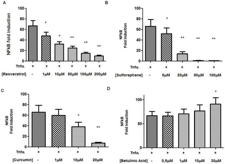 Effects of chemopreventive natural compounds on NF-κB promoter activity. Graphs representing the effect on NF-κB induction in MDA-MB-231 cells treated with different concentration of resveratrol (4.A), <t>sulphoraphane</t> (4.B), curcumin (4.C) and betulinic acid (4.D) (* p value