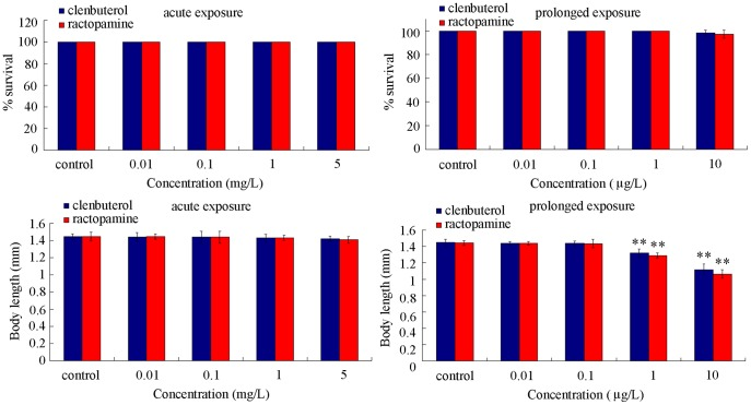 Comparison of lethality and growth in nematodes exposed to different concentrations of clenbuterol or ractopamine. Exposures were performed from the young adult for 24-hr (acute exposure) or from L1-larvae to adult (prolonged exposure). Fifty nematodes were examined per treatment for lethality assay, and twenty nematodes were examined per treatment for growth assay. Bars represent mean ± S.E.M. ** P