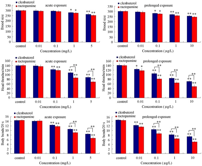 Comparison of brood size and locomotion behavior in nematodes exposed to different concentrations of clenbuterol or ractopamine. Locomotion behavior of nematodes was evaluated by endpoints of head thrash and body bend. Exposures were performed from the young adult for 24-hr (acute exposure) or from L1-larvae to adult (prolonged exposure). Twenty nematodes were examined per treatment for brood size assay, and fifty nematodes were examined per treatment for locomotion behavior assay. Bars represent mean ± S.E.M. * P