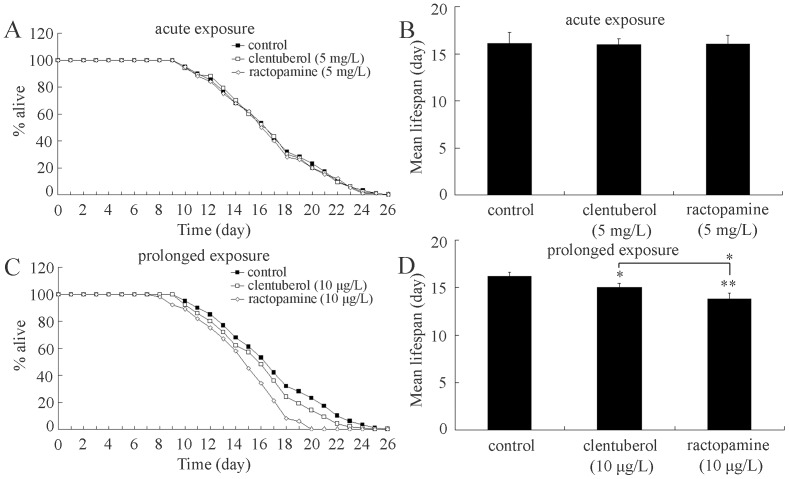 Comparison of lifespan in nematodes exposed to clenbuterol or ractopamine. (A and C) Lifespan curves of nematodes exposed to clenbuterol or ractopamine. (B and D) Comparison of mean lifespans in nematodes exposed to clenbuterol or ractopamine. Exposures were performed from the young adult for 24-hr (acute exposure) or from L1-larvae to adult (prolonged exposure). Thirty nematodes were examined per treatment. Bars represent mean ± S.E.M. * P