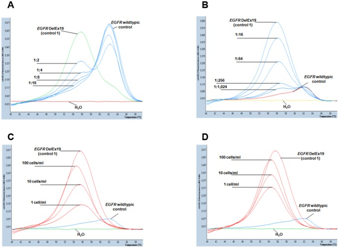 Sensitivity of EGFR DelEx19 mutation detection by real-time polymerase chain reaction and melting curve analysis. A) EGFR DelEx19 mutation detection in serially diluted DNA (50 ng/reaction) from A431 cells ( EGFR -wild type control) and NCI-HCC-827 cells ( EGFR DelEx19 mutant control 1). Melting peaks indicative of EGFR -wild type DNA (right) and EGFR DelEx19 (left) can be clearly distinguished. Real-time PCR reactions were carried out without addition of locked nucleic acids (LNA) and in serial DNA dilutions of up to 1∶16. Water (H 2 O, bottom line) and and 50 ng of undiluted genomic DNA EGFR -wild type (A431) and EGFR -mutant cells (NCI-HCC-827) were included as controls (representative examples of duplicate reactions). B) Reactions were conducted as in (A) but with addition of LNA (6 pmol). Note suppression of the EGFR -wild type signal, which allowed discrimination of the EGFR DelEx19 mutation signal up to a dilution of 1∶1,024 (